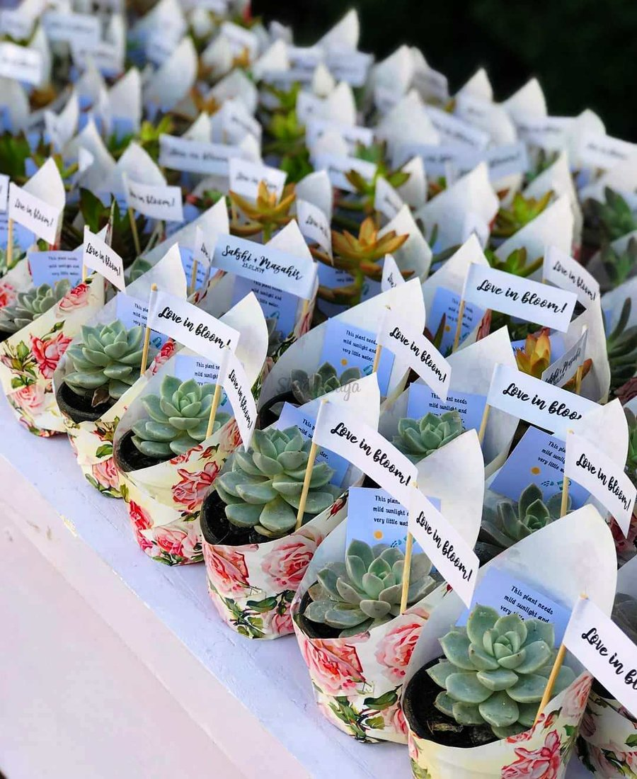 9 Easy Yet Creative Ideas To Make Your Wedding An Eco Friendly One
